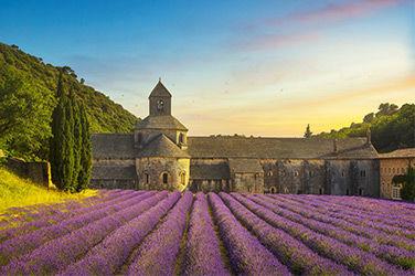 Le beau village de Gordes et champs de lavande