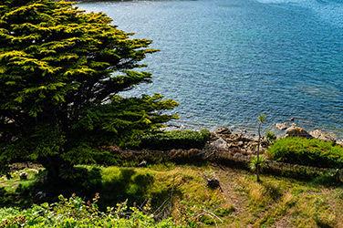 Vue sur la nature et la mer à Roscoff, France